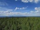 Панорама с вышки. Северо-восток. Вдали долины рек Блудная и Энгорок
