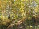 Дорожка за Жилкиным Хутором, ведущая к Гыршелунскому Камню