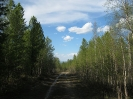 Черемховский перевал - отметка 1649 м. Вид на север.