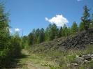Переход от россыпей в зону лесов. Высота около 1450 м